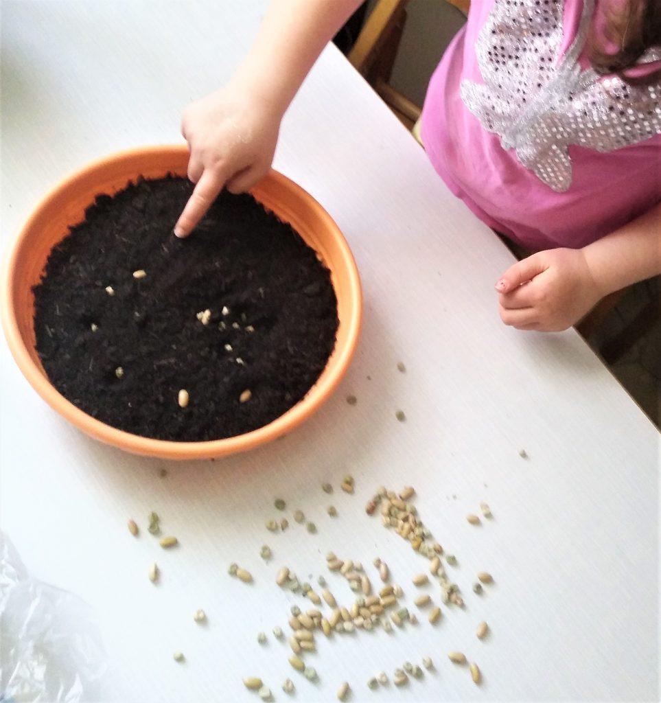 Gärtner mit Kindern Gartenarbeit mit Kinder